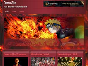 Merapi Wordpress Theme