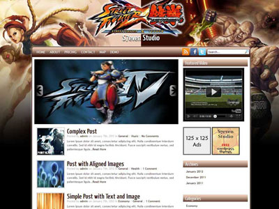 Street Fighter X Tekken WordPress Theme